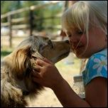 Австралийская овчарка и ребенок