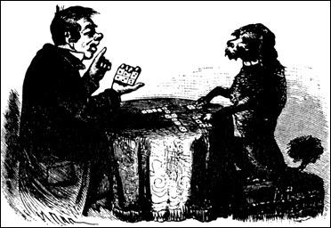 Пудель играет в домино